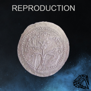 Coin Reproduction